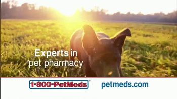 1-800-PetMeds TV Spot, 'Rely on the Experts'