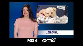 American Humane TV Spot, 'FOX 4: Part of Your Family' Featuring Ariel Winter - Thumbnail 1