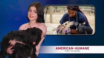 American Humane TV Spot, 'FOX 4: Part of Your Family' Featuring Ariel Winter
