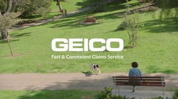 GEICO TV Spot, 'Dog Fitness Tracker' - Thumbnail 10