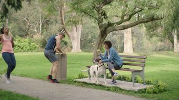 GEICO TV Spot, 'Dog Fitness Tracker' - Thumbnail 5