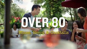 Busch Gardens Food & Wine Festival TV Spot, 'Get Adventure Island Free: Wine, Beers and Cocktails' - Thumbnail 5