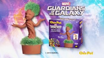Chia Pet TV Spot, 'Star Wars, Groot, Unicorn and Golden Girls' - Thumbnail 4