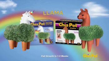 Chia Pet TV Spot, 'Star Wars, Groot, Unicorn and Golden Girls' - Thumbnail 5