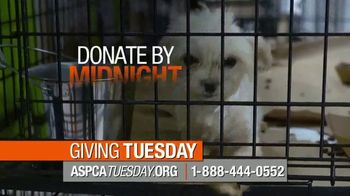 ASPCA Giving Tuesday TV Spot, 'The Animals Are Waiting'