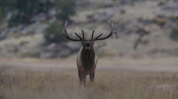 Mathews Inc. VXR TV Spot, 'Introducing the 2020 VXR'