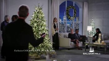 Balsam Hill Cyber Week Savings TV Spot, 'Magical Moments: 50 Percent Off' - Thumbnail 2
