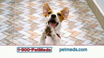 1-800-PetMeds TV Spot, 'Family: Save 30 Percent'