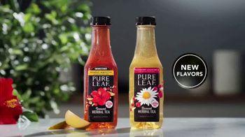 Pure Leaf Tea Herbal Iced Teas TV Spot, 'Saying No' - Thumbnail 8