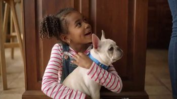 Sparkle Towels TV Spot, '200 More Puppies' - Thumbnail 5