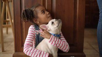Sparkle Towels TV Spot, '200 More Puppies' - Thumbnail 6