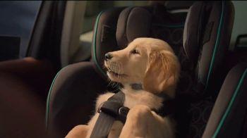 Subaru A Lot to Love Event TV Spot, 'Dog Tested: Honk' [T2] - Thumbnail 6