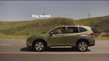 Subaru A Lot to Love Event TV Spot, 'Dog Tested: Honk' [T2] - Thumbnail 8