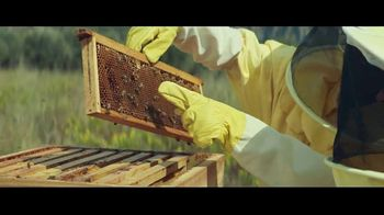 Raymond James TV Spot, 'Beekeeper'