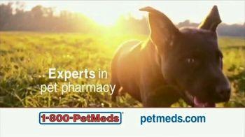 1-800-PetMeds TV Spot, 'Pets Are Family: Save 30%' - Thumbnail 3