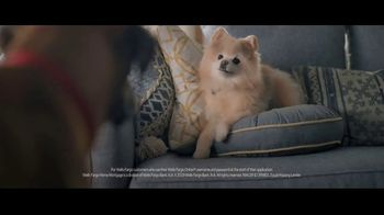 Wells Fargo Home Mortgage TV Spot, 'Lulu and Lobo Need a Space Just for Them' - Thumbnail 8