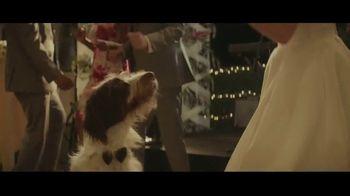 Milk-Bone TV Spot, 'Wedding' - Thumbnail 10