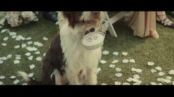 Milk-Bone TV Spot, 'Wedding' - Thumbnail 9