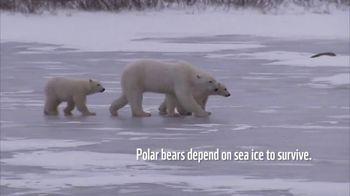World Wildlife Fund TV Spot, 'Polar Bears' Song by A Great Big World