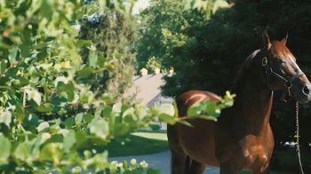 Claiborne Farm TV Spot, 'War Front: $2,900,000'