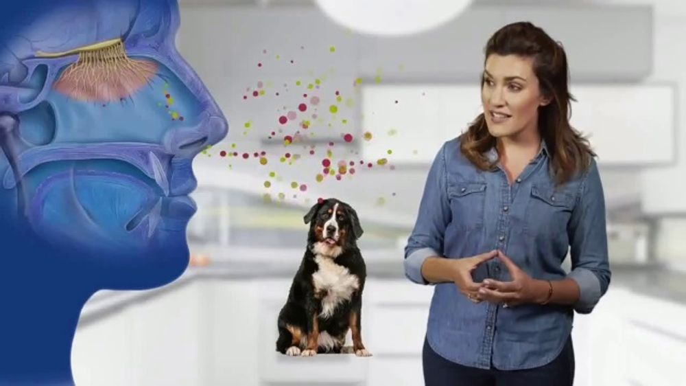 Whiff Wizard TV Commercial, 'Odor Remover'