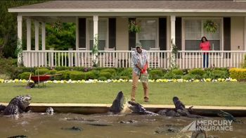 Mercury Insurance TV Spot, 'Smarter Way: Moat'