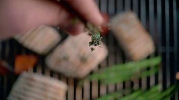 Whole Foods Market TV Spot, 'Story of the Fish' - Thumbnail 1