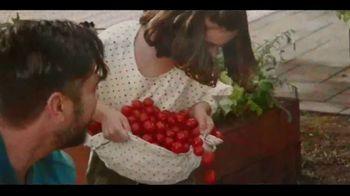 Miracle-Gro Performance Organics TV Spot, 'No Compromises' - Thumbnail 4