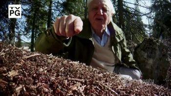 CuriosityStream TV Spot, 'Ant Mountain' - Thumbnail 2