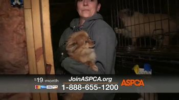 ASPCA TV Spot, 'Rescue Footage' - Thumbnail 3
