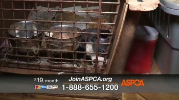 ASPCA TV Spot, 'Rescue Footage' - Thumbnail 4