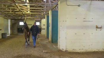 Claiborne Farm TV Spot, 'First Two-Year Olds' - Thumbnail 4