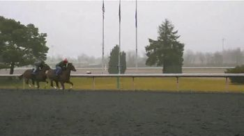 Claiborne Farm TV Spot, 'First Two-Year Olds' - Thumbnail 7