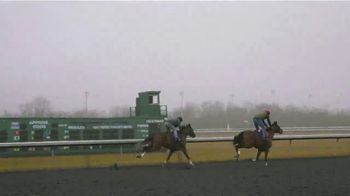Claiborne Farm TV Spot, 'First Two-Year Olds' - Thumbnail 8