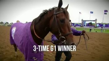 Claiborne Farm TV Spot, 'Eclipse Champion'