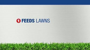 BioAdvanced 3-in-1 Weed & Feed TV Spot, 'Southern Lawns'