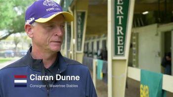 Claiborne Farm TV Spot, 'Great Attitude'
