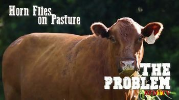 Altosid IGR TV Spot, 'Protect Your Herd Against Horn Flies' - Thumbnail 2