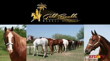 Gold Buckle Barrel Horses TV Spot, 'My Day Job' Featuring Kendra Dickson - Thumbnail 5