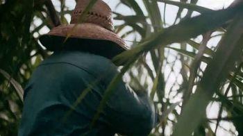 The Hawaiian Islands TV Spot, 'Hawaii Rooted: O'ahu'