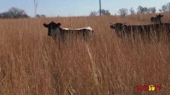 National Corn Growers Association TV Spot, 'Wonderful Relationship' - Thumbnail 5