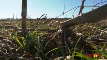 National Corn Growers Association TV Spot, 'Wonderful Relationship' - Thumbnail 6