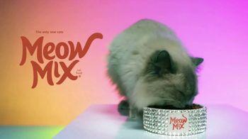 Meow Mix TV Spot, 'Remix: Luna' - Thumbnail 9