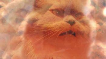 Meow Mix TV Spot, 'Remix: Luna' - Thumbnail 4