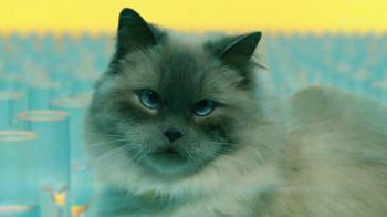 Meow Mix TV Spot, 'Remix: Luna' - Thumbnail 8