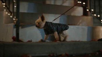 JCPenney TV Spot, 'Holidays: Mistletoe' - Thumbnail 1