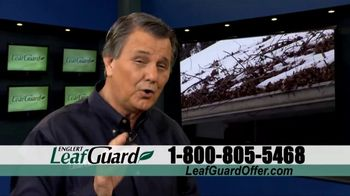 LeafGuard End of Year Savings Sale TV Spot, 'Costly Damage' - Thumbnail 1