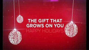 Capillus Holiday Special TV Spot, 'Treat Hair Loss at Home: $500 Off' - Thumbnail 10