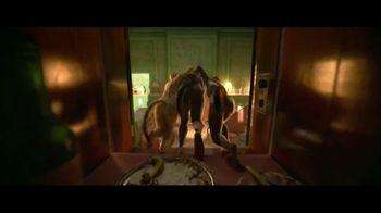 Cats - Alternate Trailer 36