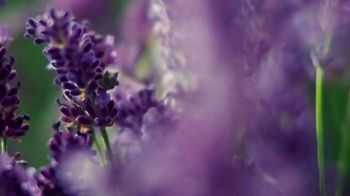 Glade PlugIns Scented Oil TV Spot, 'Tranquil Lavender & Aloe' - Thumbnail 1